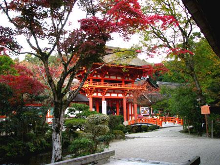 紅葉盛り 上賀茂神社1_e0048413_2385243.jpg