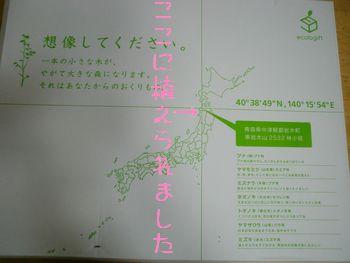 b0085815_8163835.jpg