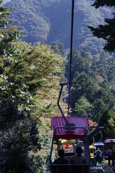 高尾山 14_d0113340_13105062.jpg