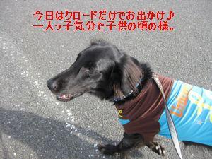 b0148945_2311119.jpg