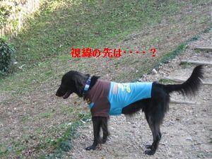 b0148945_23163972.jpg