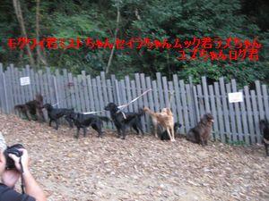 b0148945_2327163.jpg