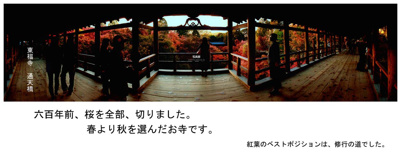 そうだ 京都、行こう。_f0021869_1164717.jpg