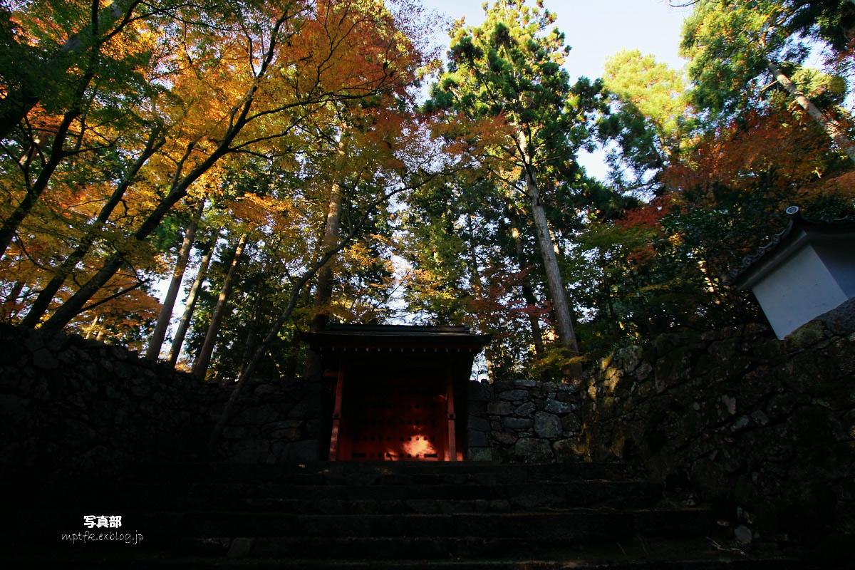 京都 大原 2_f0021869_2361053.jpg