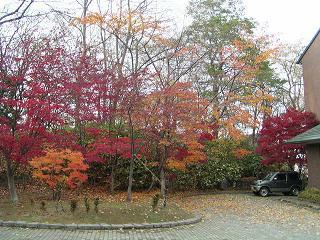 天神山緑地_f0078286_12363039.jpg