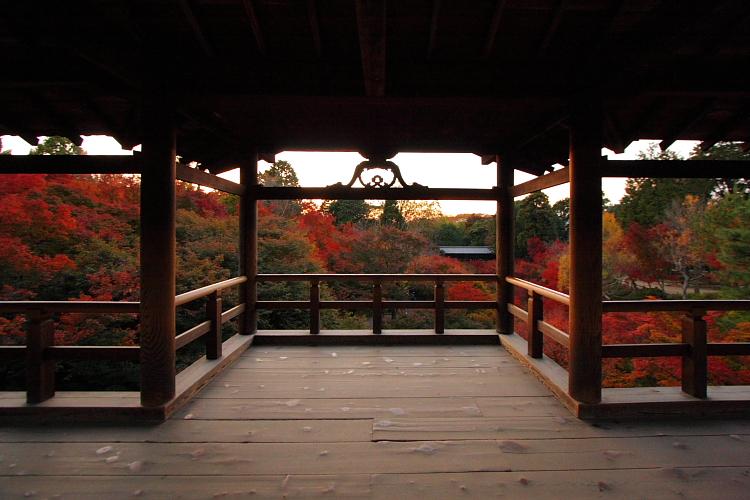 京都の紅葉名所めぐり_e0051888_3402675.jpg