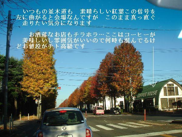 b0101991_17344017.jpg