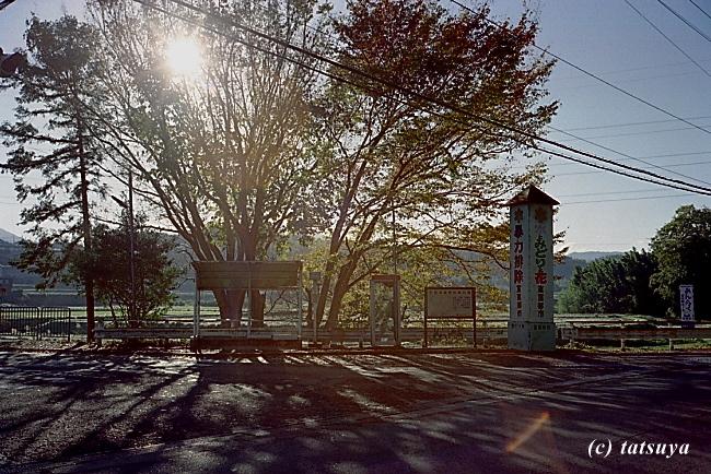 Nov.  23  (Sun)   バス停_f0139991_2050148.jpg