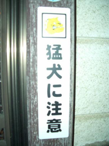 b0124693_19503181.jpg