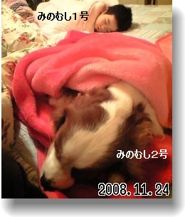 c0040201_1817169.jpg