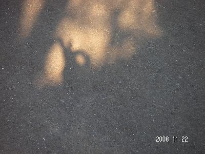 f0146802_2074958.jpg