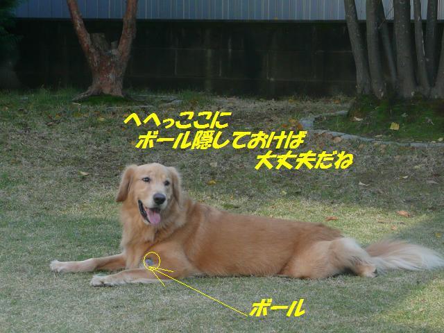 f0114128_15584468.jpg