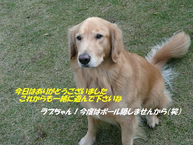 f0114128_16224730.jpg