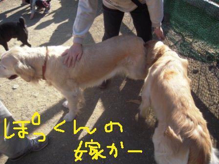 f0176830_16504866.jpg