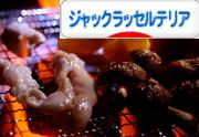 松阪牛のホルモンとカルビとミノ。地元で人気の焼肉屋『脇田屋』さんで購入♪味噌たれが美味しいの♪400gで3000円也(笑)。
