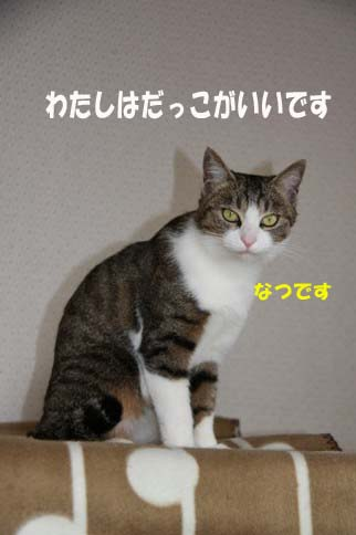 e0151545_14591385.jpg