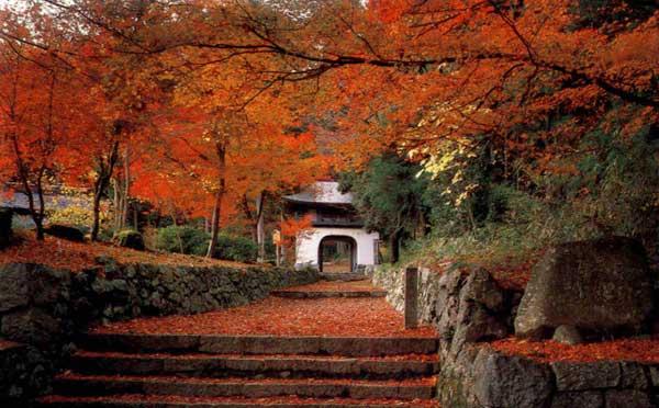 パリと京都_c0156749_1345738.jpg