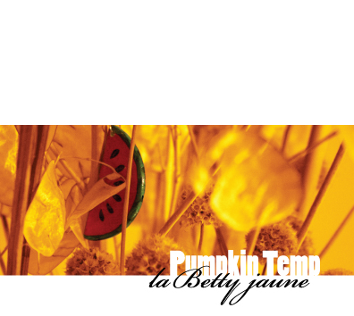 Pumpkin Temp  - 『la Betty jaune』
