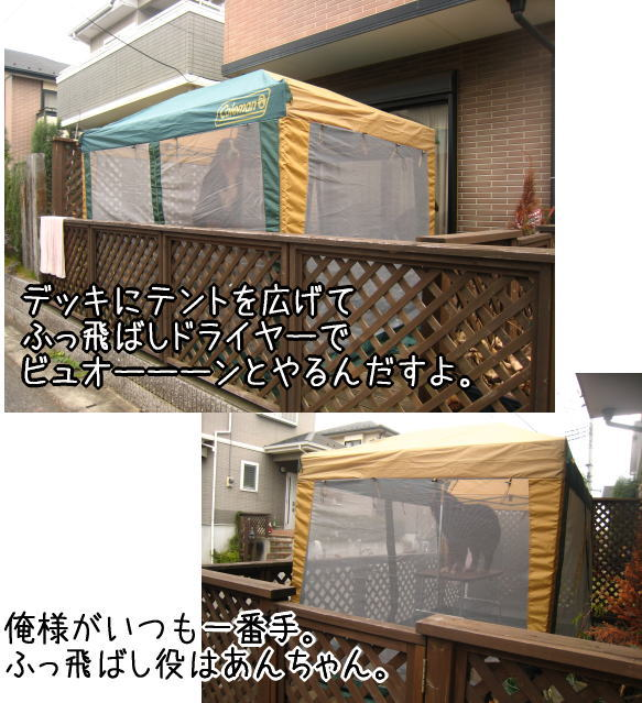 f0187974_1751529.jpg