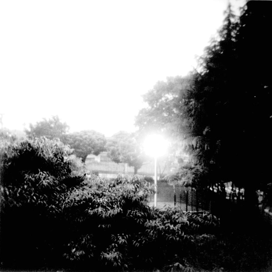 f0169688_19554161.jpg