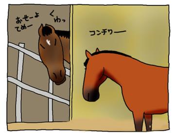 ビバとスピの闘い_a0093189_9515533.jpg