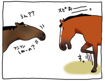 ビバとスピの闘い_a0093189_9524263.jpg