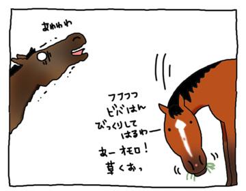 ビバとスピの闘い_a0093189_9534492.jpg