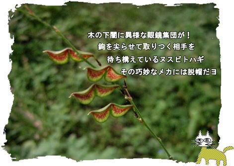 f0137096_19135676.jpg