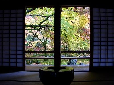 光明禅寺の紅葉2008_d0116009_2304144.jpg
