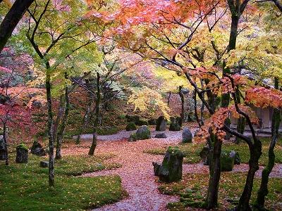 光明禅寺の紅葉2008_d0116009_231166.jpg