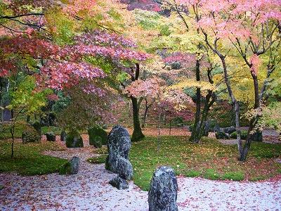 光明禅寺の紅葉2008_d0116009_2315257.jpg
