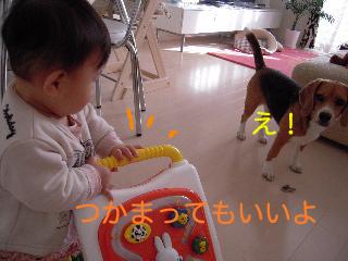 b0104420_1647239.jpg