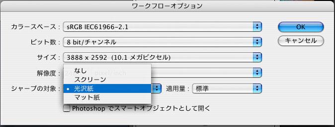 Camera Raw 5.2 アップデート_f0077521_16581338.jpg