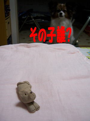 c0048940_22402794.jpg
