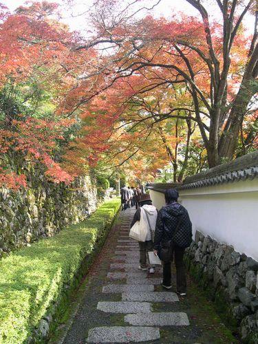 京都洛西でもみじ狩り_b0025947_22115470.jpg