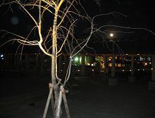f0138874_14482169.jpg