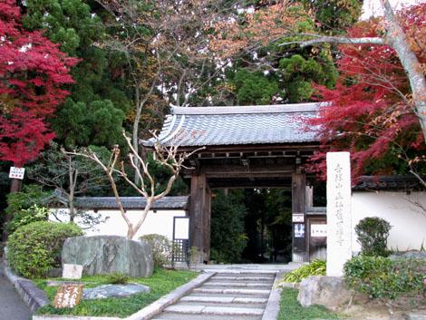 紅葉を訪ねて 借景の正伝寺_e0048413_20561974.jpg