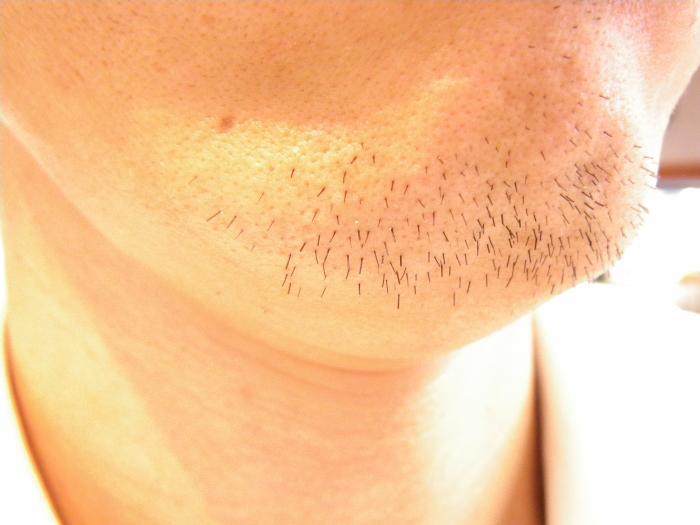 髭、鬚・増殖中^^;_c0120834_1539474.jpg