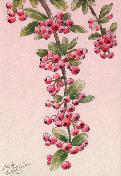 鈴なりの赤い実~水彩画~_b0089338_2343466.jpg