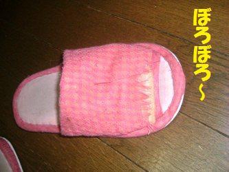 d0140668_13525575.jpg