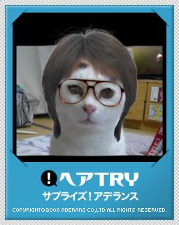 f0050468_2112315.jpg