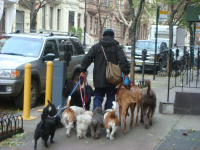 Broadway & 72nd St を散歩すると、_d0100880_14401783.jpg