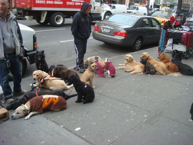 Broadway & 72nd St を散歩すると、_d0100880_14441860.jpg