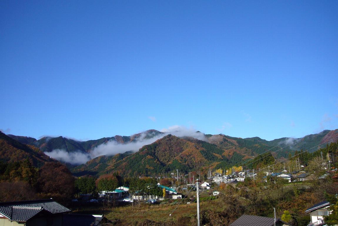 雨あがりの朝_e0124594_2024174.jpg