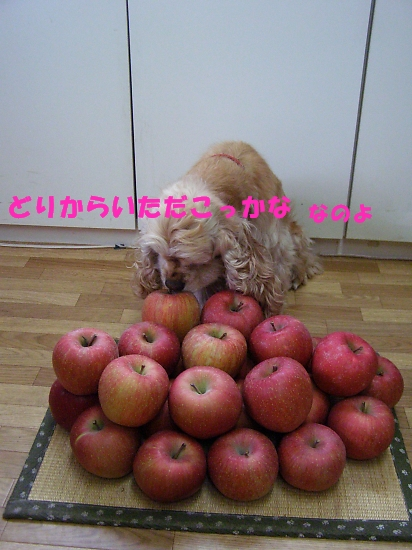 b0067012_23532596.jpg