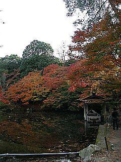 京都某所_c0025217_14591054.jpg