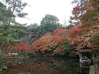 京都某所_c0025217_14591799.jpg