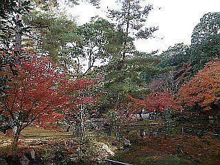 京都某所_c0025217_14592975.jpg