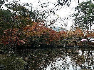 京都某所_c0025217_1501194.jpg
