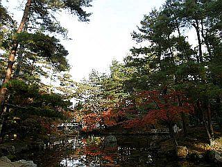 京都某所_c0025217_1501733.jpg